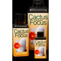 Cactus Focus 500ml