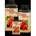 Strawberry Focus 500ml